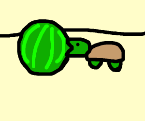 Turtles mouth is too small to eat the melon