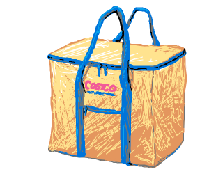 Costco shopping bag