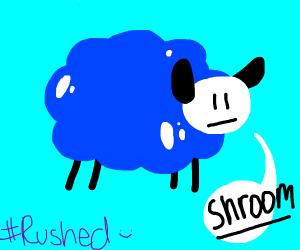 Blue sheep mushroom cloud