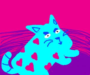 Cylinder cat