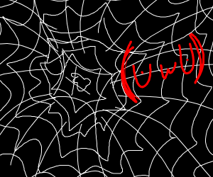 UwU spider on web