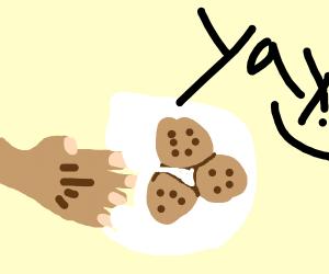 Grandma baked cookies!