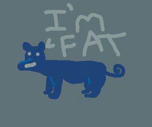 Fat Wiener Dog