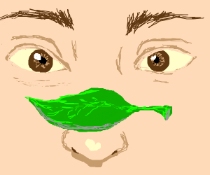 That cute leaf on your face is a cashier.
