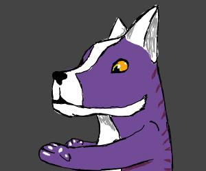 Furry is empty inside