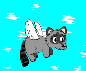 Here comes a flying raccoon.