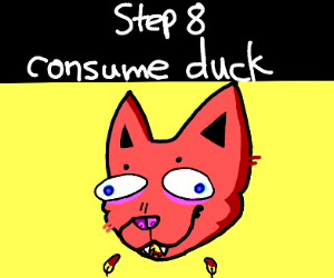 Step 7: feed the cat with the duck