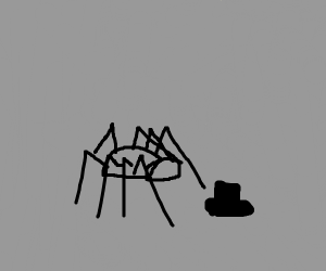 spider and the hat