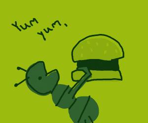 Bug eating hamburger