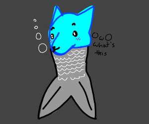 a furry's head on a fish