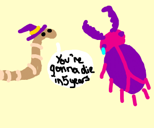 worm wizard predicts death for beetle