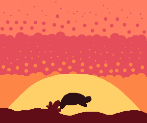 Turtle jumping from the sea at sunset