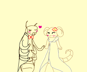Cockroach marries mouse bride