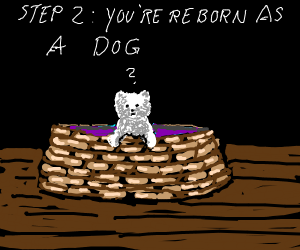 Step 1: Be Born again (Reincarnation)
