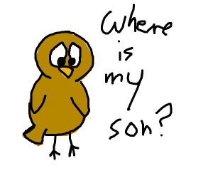 Bird asks why they are taking his son