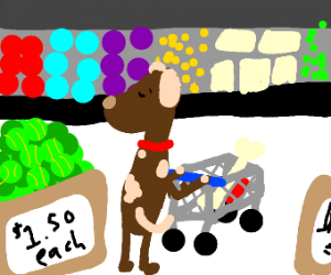 Dog doing his weekly shop