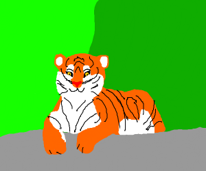 Happy tiger not going to kill you