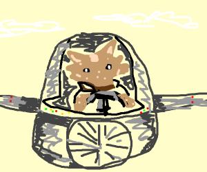 Hyena Pilot