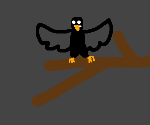 Bird enjoying the night on a branch
