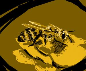 a bee radiating its beeish qualities