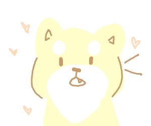 A barking shiba inu