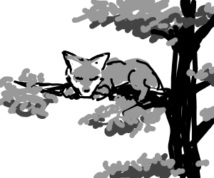 A fox sleeping on the limb of a tree.