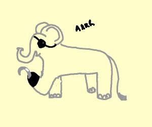 elephant pirate