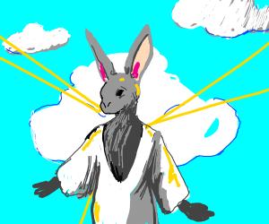 God as a rabbit