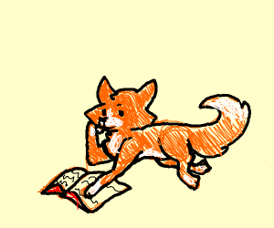 a fox with a book