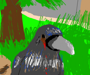 raven with a bleeding eye