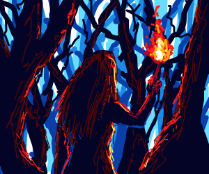 Searching the forest with torch