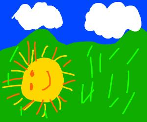 Sun in a grassy hill