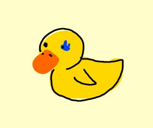 Sans duck