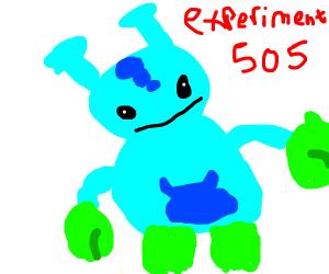 Name 505