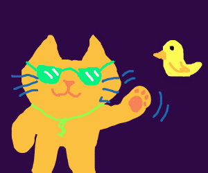 Cat w/ sunglasses waves to bird