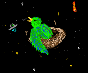 Bird sleeps in space