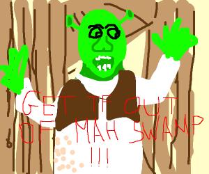 Shrek yelling Get out of mah swamp!!!