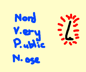 what Nord VPN REALLY stands for