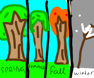 tree goes through the seasons and dies