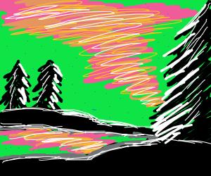 aurora borealis in forest
