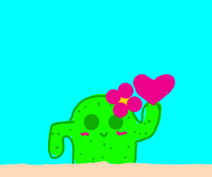 Cactus Holding A Heart