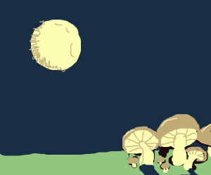 Mushrooms under the full moon