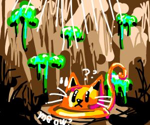 A hat cat in a pit?