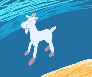 Goat underwater