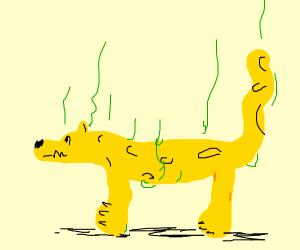 smelly cheetah