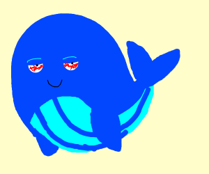 High whale.