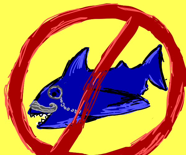 no fancy sharks allowed!!!