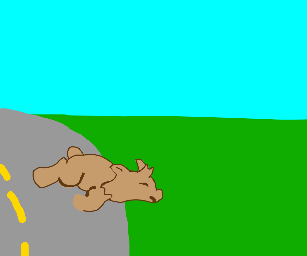 bobcat fell off the road