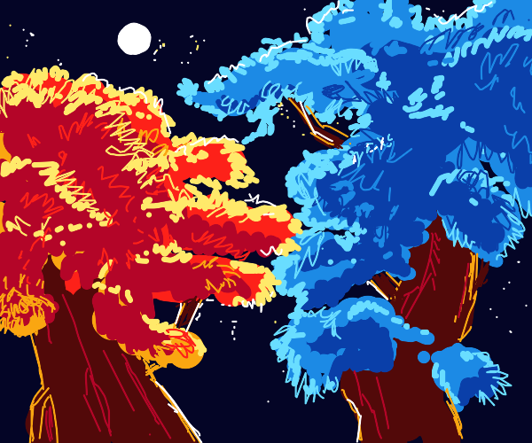Two colorful trees at night