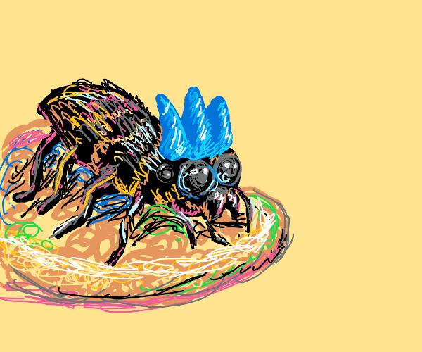 spider wearing blue crown
